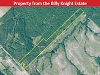 Estate Auction : Glenwood : Wheeler County : Georgia