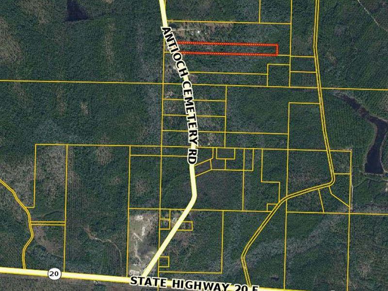 Vacant Land : Bruce : Walton County : Florida