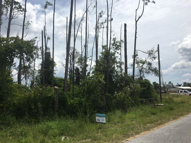 Homesite In Panama City, Fl : Panama City : Bay County : Florida