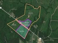 Kerr Lake Area Farm Auction : Boydton : Mecklenburg County : Virginia