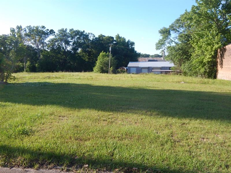 Dev Site Auction In Opp Zone, Ms : McComb : Pike County : Mississippi