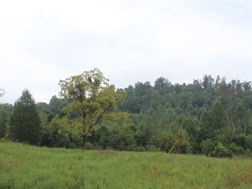 60 Acres Warren County Land : Bowling Green : Warren County : Kentucky