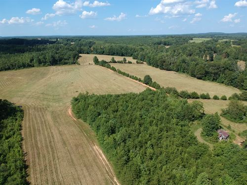 Estate Auction 352 Acre Farm : Gretna : Pittsylvania County : Virginia