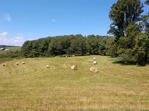Pasture Land in Floyd VA Auction : Floyd : Virginia
