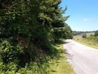 Land at Auction in Floyd VA : Floyd : Floyd County : Virginia