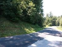 Building Lot Auction in Floyd VA : Floyd : Floyd County : Virginia