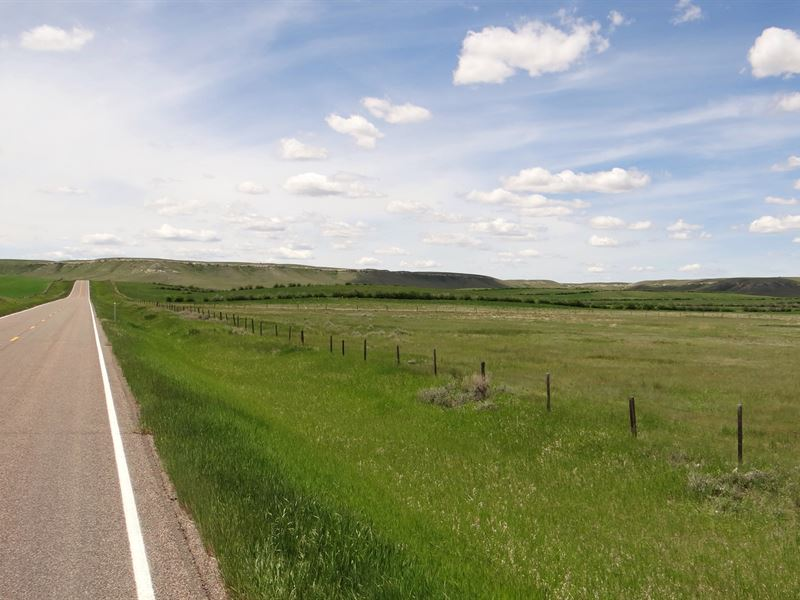 Northern Montana Land Auction : Kevin : Toole County : Montana