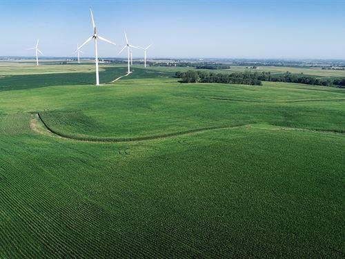 Land & Wind Rights Auction : Princeton : Bureau County : Illinois