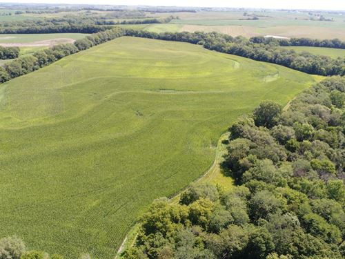 Advanced Land Auction Notice : Fillmore : Andrew County : Missouri