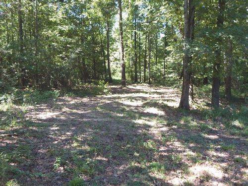 Duck Deer Turkey Hunting, Homesite : Hernando : De Soto County : Mississippi