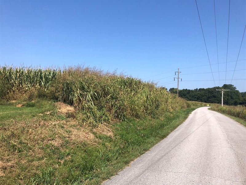 18.98 Acres Warren Co, Land 3 : Smiths Grove : Warren County : Kentucky