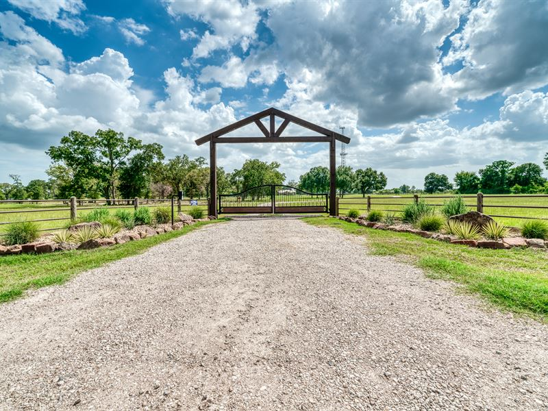 115 Acres, Home, Pool,& Equipment : Hempstead : Waller County : Texas