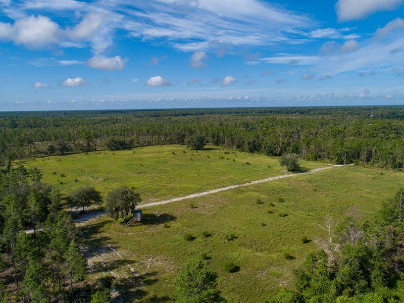 7 C's Hunting Ranch & Lodge : Cresent City : Putnam County : Florida