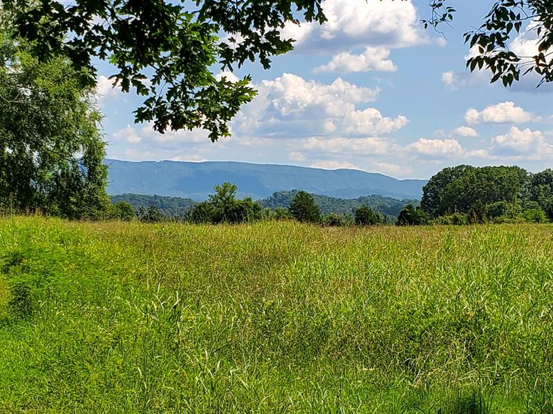 87 Prime Acres In Sevier Co, Tn : Boyds Creek : Sevier County : Tennessee
