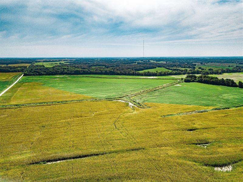Live Chariton & Randolph County : Salisbury : Chariton County : Missouri