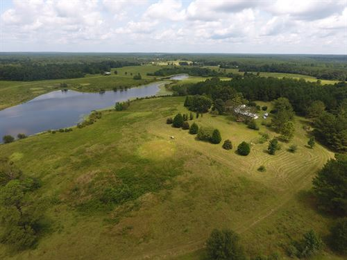 Poplarville, Ms Pasture Land : Poplarville : Pearl River County : Mississippi