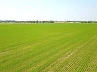 85 Acres Vacant Land : Circleville : Pickaway County : Ohio