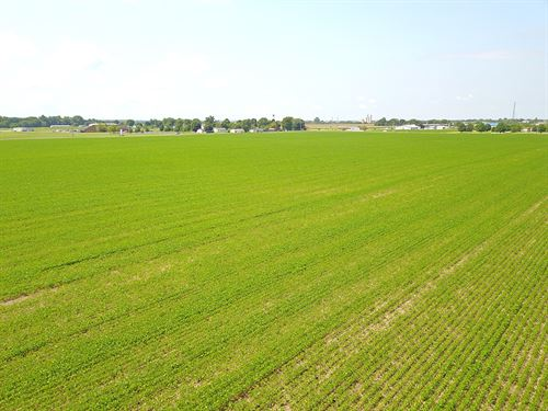 85 Acres Vacant Land : Circleville : Pickaway County : Ohio