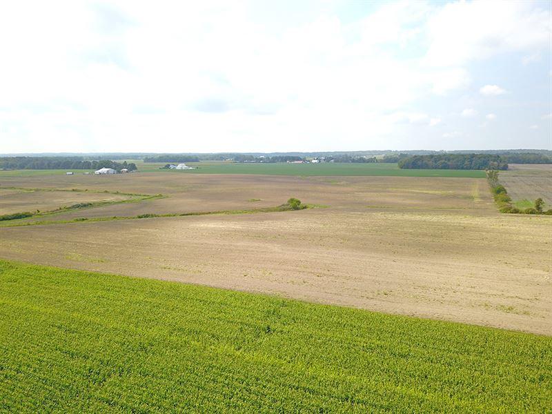 173 Acres Vacant Land : Bokes Creek Twp : Logan County : Ohio