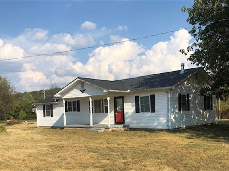 Absolute Auction, Offered 5 Tracts : Albany : Clinton County : Kentucky