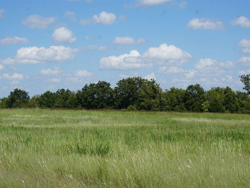 No Reserve Auction 160 Ac Cushing : Cushing : Payne County : Oklahoma
