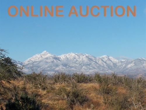 Online Auction .42 Acre Lot : Sonoita : Santa Cruz County : Arizona