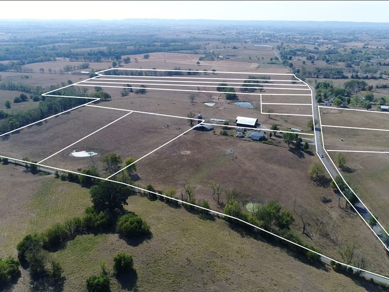 Absolute Farm Auction, 146 Acres : Danville : Boyle County : Kentucky