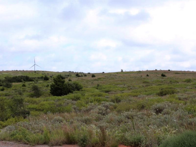160 Acres Grassland : Elk City : Beckham County : Oklahoma
