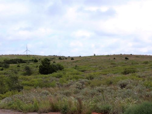 160 Acres Grassland : Elk City : Beckham County : Oklahoma