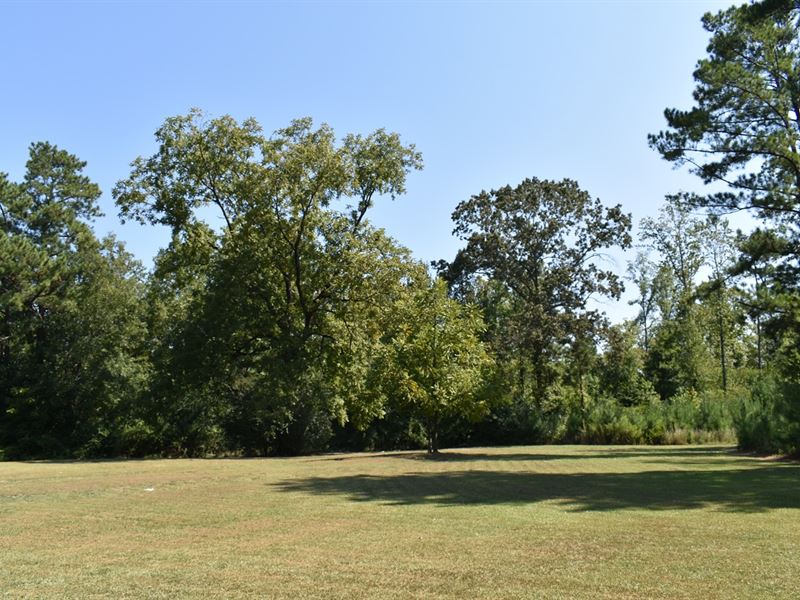 Absolute Auction Of Multi-Property : Talladega : Talladega County : Alabama