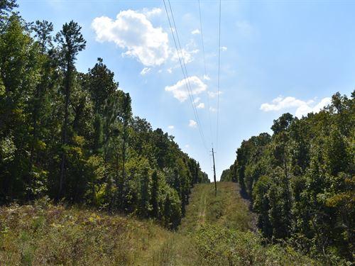 Absolute Auction Recreational Tract : Talladega : Alabama