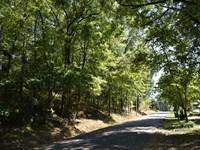 Absolute Auction Residential Lot : Talladega : Talladega County : Alabama