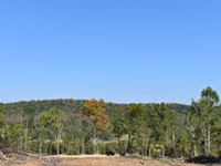 Auction 138 Acres in Guntersville : Guntersville : Marshall County : Alabama