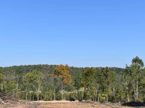Auction 138 Acres in Guntersville : Guntersville : Marshall County : Alabama