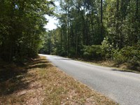 Absolute Auction 12 Acres : Guntersville : Marshall County : Alabama