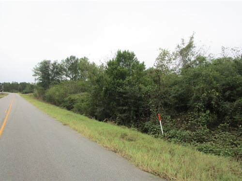 29.4 Acres Of Residential Land : Cowarts : Houston County : Alabama