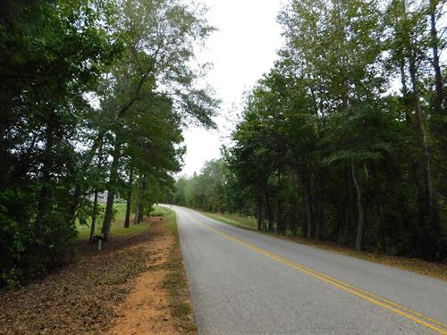 8 Residential Lots & Vacant Land : Cottondale : Tuscaloosa County : Alabama