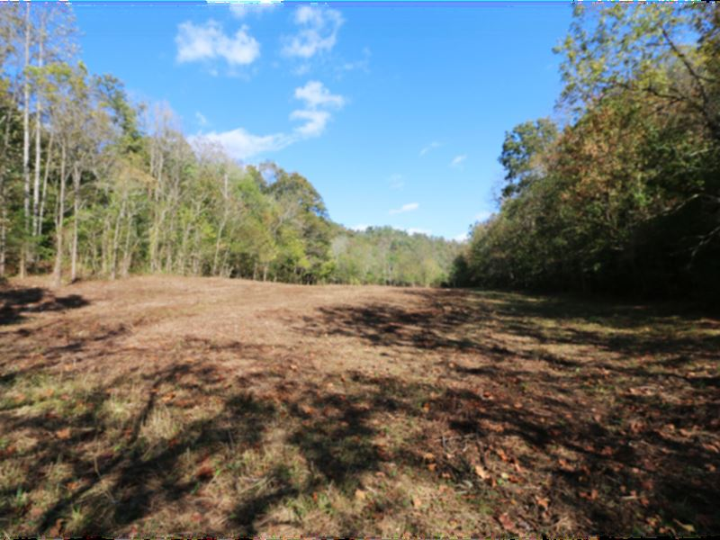 73.9 Mostly Wooded Acres, 3 Tracts : Bloomington Springs : Putnam County : Tennessee