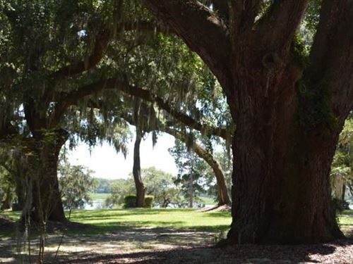 Marsh Front Residential Lot : Seabrook : Beaufort County : South Carolina