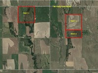 3 Productive Cultivated Tracts : Phillipsburg : Phillips County : Kansas