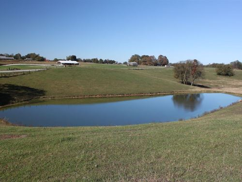 Warren County Farm, Land : Smiths Grove : Warren County : Kentucky