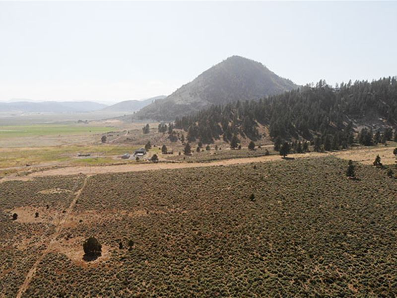 To Make an Offer, Please Call : Portola : Plumas County : California