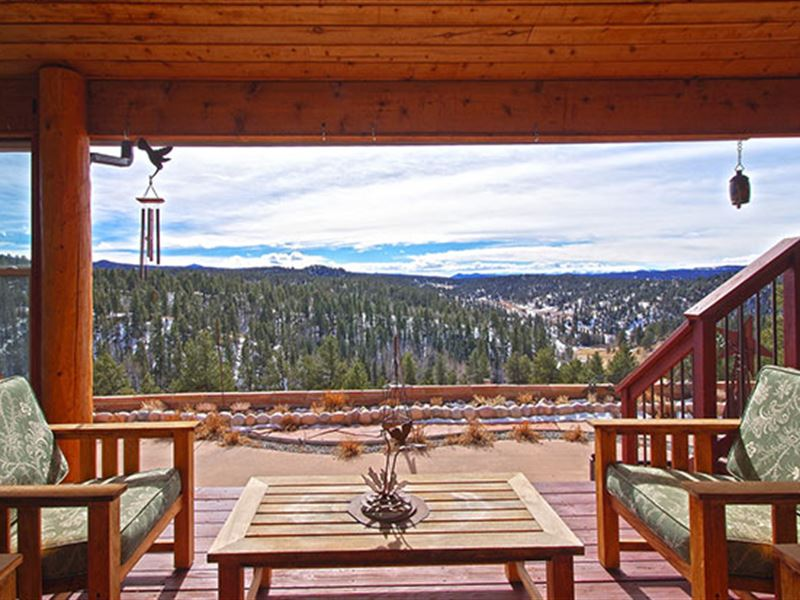 Coming to Auction, The Wandering : Florissant : Teller County : Colorado