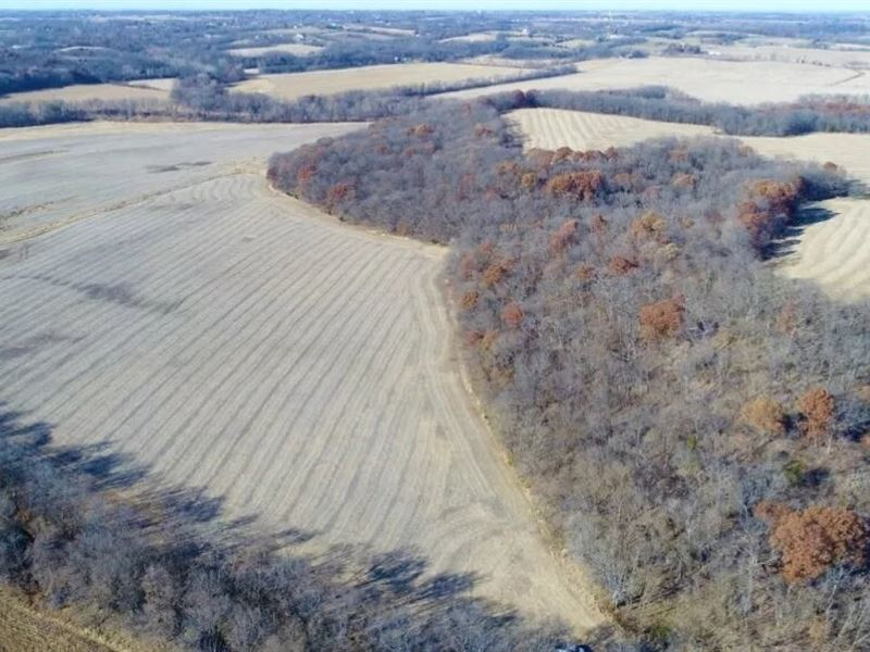 Tract 1 205 Ac, Quality Farm Land : Savannah : Andrew County : Missouri