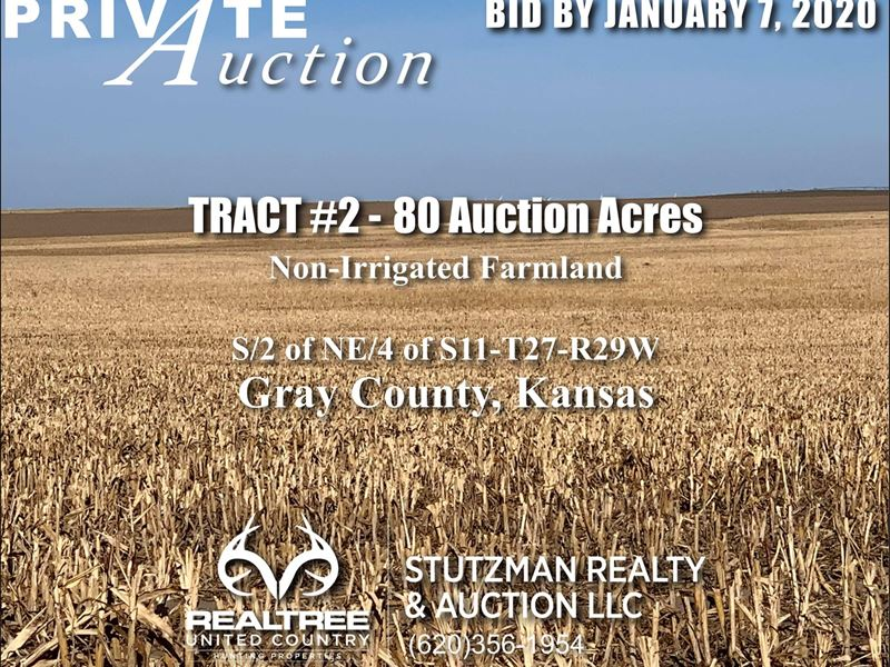 Gray County Ks, TR 2, 80 Acres : Ingalls : Gray County : Kansas