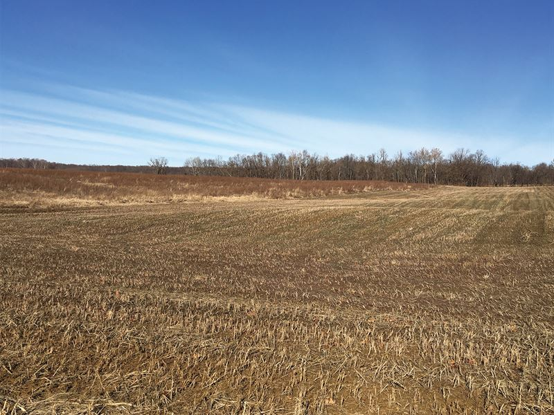 Absolute Land Auction In Indiana : Princeton : Gibson County : Indiana