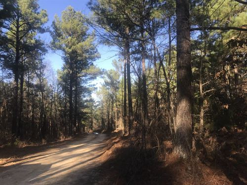 156+/- Acres in Gore Springs, MS : Gore Springs : Grenada County : Mississippi
