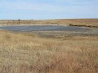 Fenced Grassland With Water : Rush Center : Rush County : Kansas