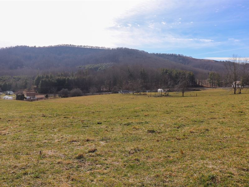 Farm Land at Auction in Floyd VA : Willis : Floyd County : Virginia
