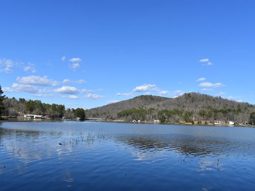 Absolute Auction Waterfront Lot : Ashville : Saint Clair County : Alabama